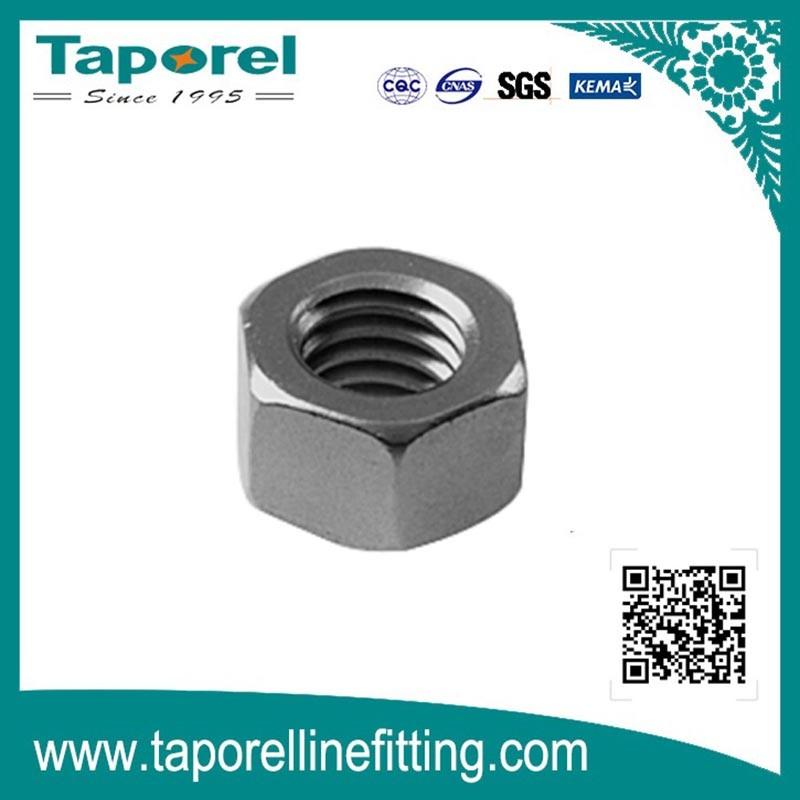 Galvanized Steel Nut